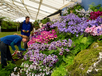 RHS Malvern Spring Show Prepares for Judging and the public when it opens its gate tomorrow morning.